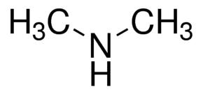 dimetylamina