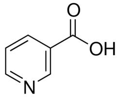 kwas nikotynowy